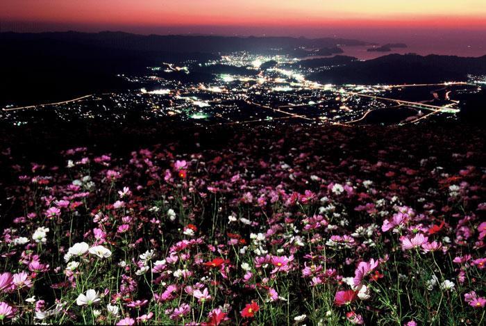 【入選】石谷年良「夜景」