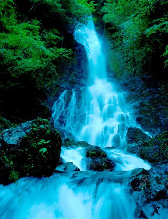 【特選】木下滋「下りの滝」