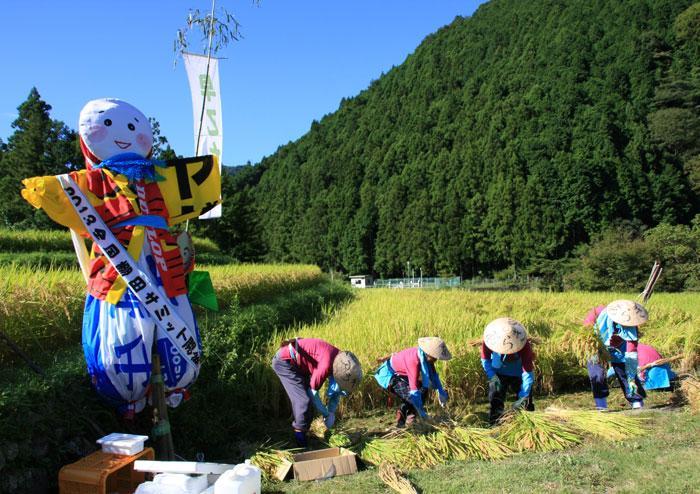 【入選】岩崎洲男「早乙女隊による稲刈り」