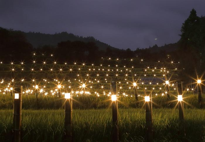 【入選】田中嘉宏「あらぎ島に星達のベール」