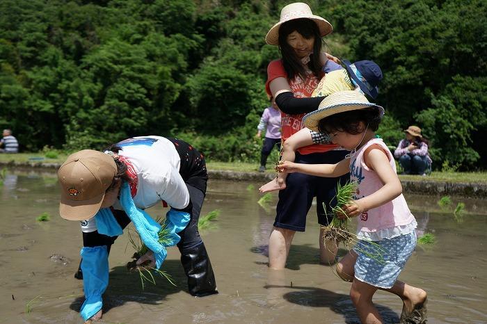 【佳作】上野山典男「私も植えさせて」
